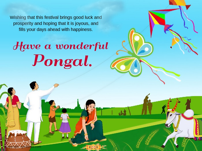 Happy makar sankranti greeting card 37229 send a card from happy makar sankranti m4hsunfo